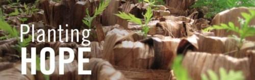 2013-Planting-Hope1